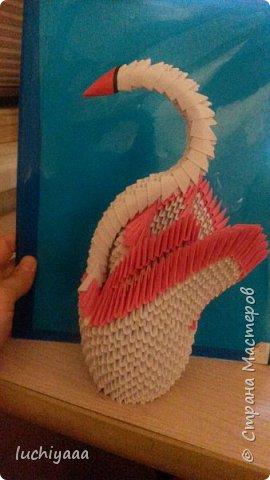 Лебедь. Модульное оригами фото 1