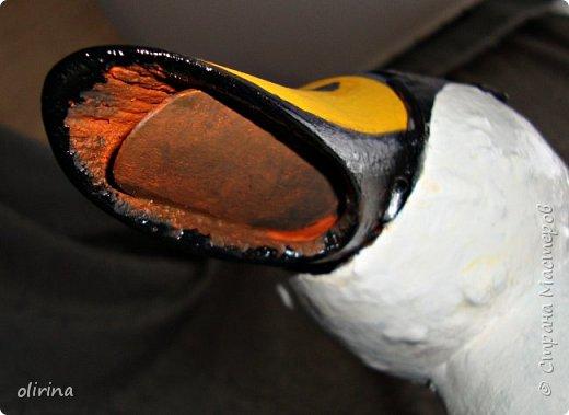 Здравствуй Страна Мастеров.Вот такая птичка получилась из неформатной тыквы. Внизу ещё не засох клей, потом он будет прозрачный. фото 9