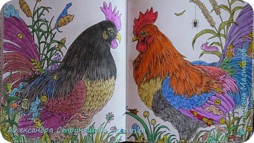 Добрый всем вечер или день! Вот решила поделиться своим новым увлечением (относительно новым!) Раскраски для взрослых - очень увлекательное занятие, просто невозможно оторваться. Раскрашиваю, раскрашиваю и раскрашиваю как только выпадает свободная минутка. Раскрашиваю всё, что нравится: книги Джоанны Басфорд, Милли Маротта, Керби Розанеса, журналы, распечатки из интернета... Использую в основном карандаши обычные и акварельные, реже фломастеры и гелевые ручки. Всем советую, возвращает в детство, приносит состояние покоя и умиротворения... фото 10