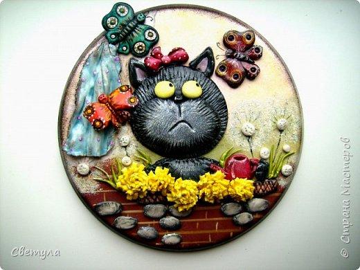 Доброго времени суток, Страна! С первым днем весны вас всех ! Продолжаю кошачью тему))))))  фото 1