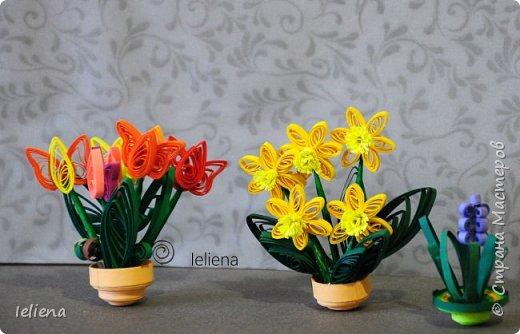Когда ожидаешь приход весны...)  фото 4