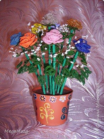Эти цветочки я плела года 4 назад на Новый Год в подарок крёстной. Идея была мамина, плела же только я))) Видела эти цветочки на просторах СМ, тока я их не правильно собрала, потому что все лепестки расползлись, увы. Но всё равно получилось симпатично! Сильно не ругайте, просто до этого я ещё никогда цветы не плела *покраснел* фото 1