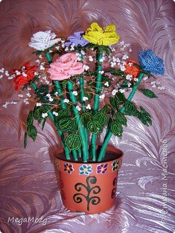 Эти цветочки я плела года 4 назад на Новый Год в подарок крёстной. Идея была мамина, плела же только я))) Видела эти цветочки на просторах СМ, тока я их не правильно собрала, потому что все лепестки расползлись, увы. Но всё равно получилось симпатично! Сильно не ругайте, просто до этого я ещё никогда цветы не плела *покраснел* фото 3