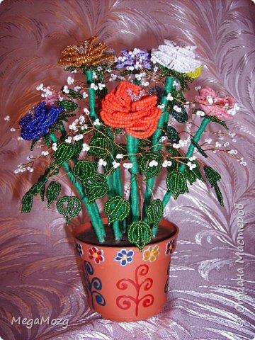 Эти цветочки я плела года 4 назад на Новый Год в подарок крёстной. Идея была мамина, плела же только я))) Видела эти цветочки на просторах СМ, тока я их не правильно собрала, потому что все лепестки расползлись, увы. Но всё равно получилось симпатично! Сильно не ругайте, просто до этого я ещё никогда цветы не плела *покраснел* фото 4