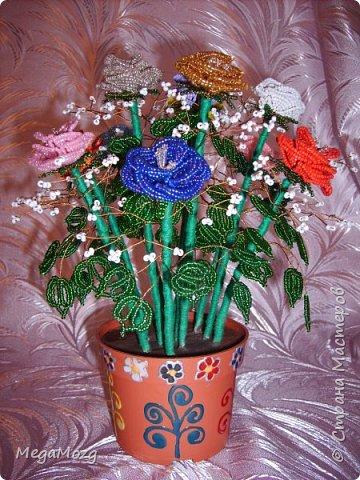 Эти цветочки я плела года 4 назад на Новый Год в подарок крёстной. Идея была мамина, плела же только я))) Видела эти цветочки на просторах СМ, тока я их не правильно собрала, потому что все лепестки расползлись, увы. Но всё равно получилось симпатично! Сильно не ругайте, просто до этого я ещё никогда цветы не плела *покраснел* фото 5