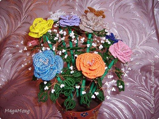 Эти цветочки я плела года 4 назад на Новый Год в подарок крёстной. Идея была мамина, плела же только я))) Видела эти цветочки на просторах СМ, тока я их не правильно собрала, потому что все лепестки расползлись, увы. Но всё равно получилось симпатично! Сильно не ругайте, просто до этого я ещё никогда цветы не плела *покраснел* фото 7