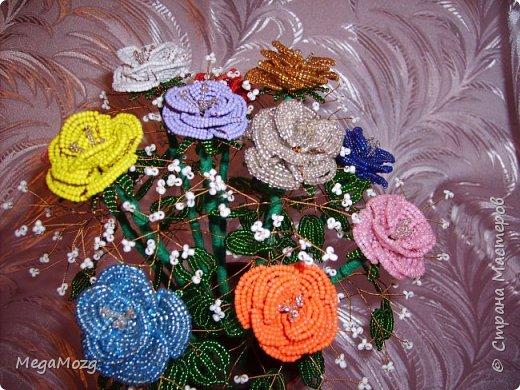 Эти цветочки я плела года 4 назад на Новый Год в подарок крёстной. Идея была мамина, плела же только я))) Видела эти цветочки на просторах СМ, тока я их не правильно собрала, потому что все лепестки расползлись, увы. Но всё равно получилось симпатично! Сильно не ругайте, просто до этого я ещё никогда цветы не плела *покраснел* фото 8