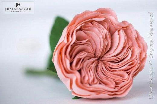 Пионовидная роза Дэвида Остина из фоамирана фото 1