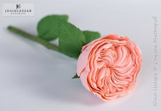 Пионовидная роза Дэвида Остина из фоамирана фото 4