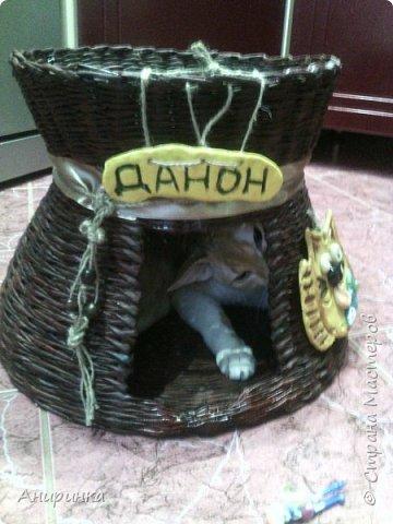 Вот и у меня положено начало кошаче-собачьему ДОМОплетению :))) фото 9