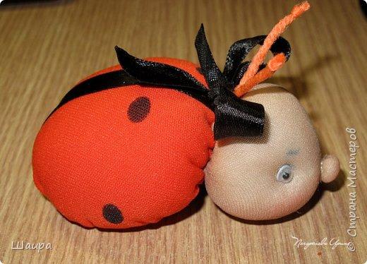 Идею таких божьих коровок подхватила у Маргариты http://stranamasterov.ru/user/383086. Подумала, что тоже неплохо было бы показать деткам.  Принцип-то схож с куколкой-благополучницей.  Пусть будет Игольница! фото 1