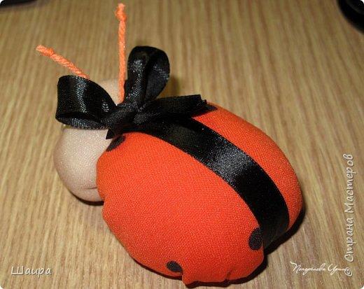 Идею таких божьих коровок подхватила у Маргариты http://stranamasterov.ru/user/383086. Подумала, что тоже неплохо было бы показать деткам.  Принцип-то схож с куколкой-благополучницей.  Пусть будет Игольница! фото 3