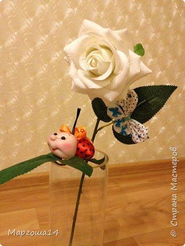 """Продолжила мастерить подарки на тему """"букашки""""))) Сшила маленьких бабочек,которыми можно украсить и кукол,и цветы и сделать магниты. Пришлось немного помаяться с этими малявками))) Вот такое букашечное семейство получилось. Большие бабочки с маленькими . фото 11"""