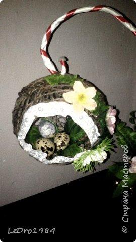 Очередной топиарий гнездо фото 2