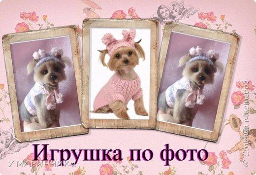 НИКОЛЬ фото 1
