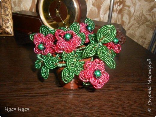 Цветы из бисера (Маки) фото 3