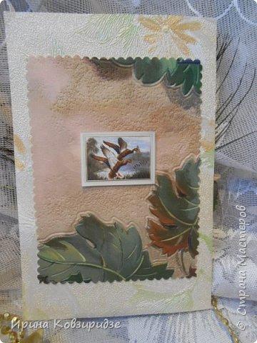 Сделала 4 открытки из остатков срапбумаги, остатков красивых обоев (бумага есть бумага), наклеек, кружев и перьев, и т.д. фото 20