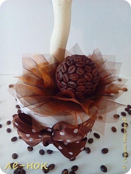 Еще раз всем здравствуйте:-) Я фанат  творчества Ларисы Тепляковой. Этот топиарий создан под впечатлением от просмотра одной из ее работ-кофейного топиария. Цветы из 2 видов гофры ,2 вида шоколадной органзы-горький шоколад и с золотинкой.Сизаль,атласная  лента и бумага-сливочного оттенка. Ну и в добавок-кофейные зерна:-)   фото 4