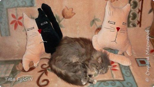 Добрый вечер! Появившийся дома кот Дымок стал общим  любимцем Теперь от весит 5 кг и  любим  мы его ещё больше Может поэтому увидев всяческие игрушки, статуэтки, картинки с кошками постоянно зависаю около них а ещё говорят что после трудового дня очень полезно смотреть на фото котят  А у меня живой источник положительных эмоций Ну вот имея старые халаты и насмотревшись на работы мастериц  появились 3 кота-подушки И с халатами распрощалась и  вспомнила  как здорово шить оказывается За вечер на одном дыхании вышли вот такие чудненькие  мягонькие странноватые котишки  фото 10