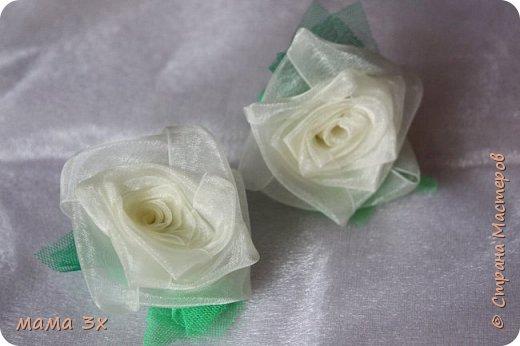 ах, эти розы... фото 3