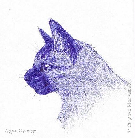 """Добрый день, дорогие жители Страны :) В последнее время я рисую что-то одних котов. Ладно бы хорошие арты, но нет  - всякую ерунду)) Это весенняя аватарка для арт-группы """"Солнечный Кот"""", в которой я обитаю (вот ссылка, если что: http://vk.com/solnechnyy_kot) По быстрому накалякала гуашью: фото 9"""