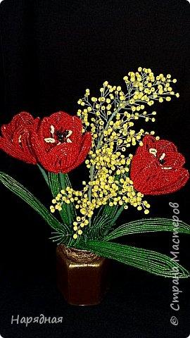 Тюльпаны и мимоза фото 1