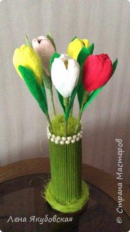 Добрый вечер дорогие жители  и гости страны мастеров!!! Поздравляю всех женщин с наступающим  праздником 8  Марта!!! Желаю всем здоровья, весеннего настроения, любить и быть любимыми и конечно всем больших творческих успехов!!! Вот такие сладкие букетики я приготовила своим близким и знакомым,так как у нас весна не скоро ещеи тюльпанчики еще только в июне зацветут. Плела из рекламок и только покрыла лаком, внутри разные конфетки. Для своей любимой доченьки, она очень любит тюльпаны. фото 7