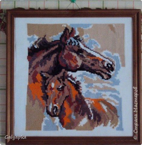Вышивала к 2014 году. Эти коняшки украшают пока  фото 1