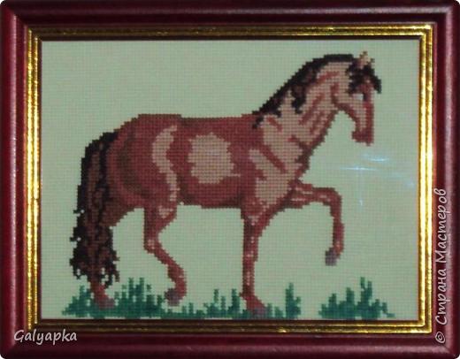 Вышивала к 2014 году. Эти коняшки украшают пока  фото 10
