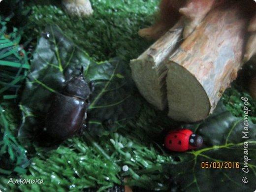 Шурале и дровосек фото 8