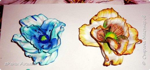 орешки цветут
