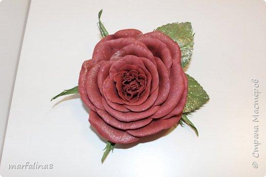 Здравствуйте, дорогие мастеряне! Представляю на ваш суд мое четвертое творение из фома. Это брошь. Выкройку для этой розы делала сама. Ничей МК НЕ использовала. Хочу подарить свекрови на 8 марта. фото 1