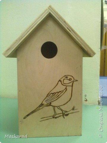 вот такой сквореник, наш папа сделал ребенку в сад. материал фанера, трафареты птиц взяза с просторов необъятного интернета фото 1