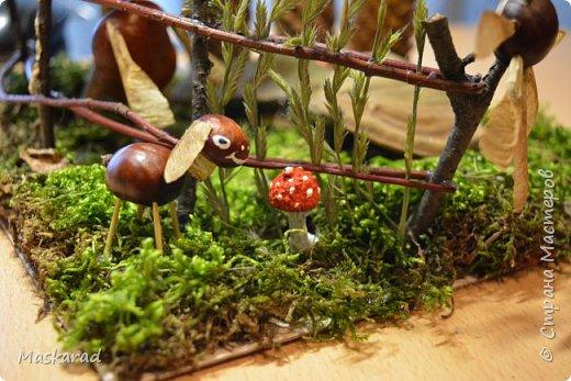 деревенский лесной домик осенью  фото 4