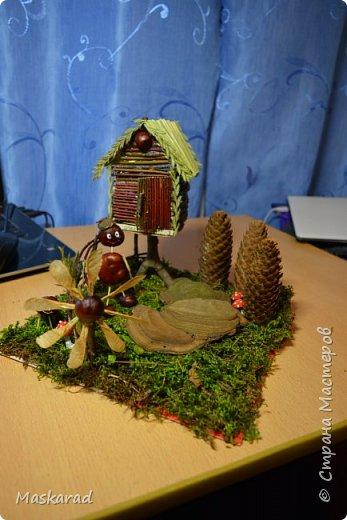 деревенский лесной домик осенью  фото 3