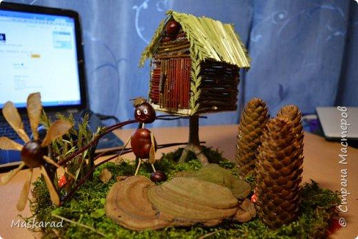 деревенский лесной домик осенью  фото 2