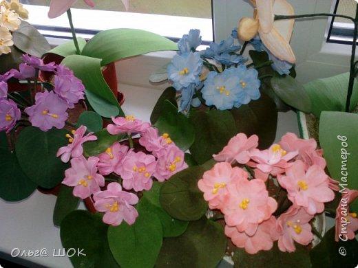 Всем привет! Спишу в предпраздничные дни показать  вам свои цветочки, которые я приготовила для подарков своим подругам и родным. И конечно же поздравить всех девочек,женщин с праздником Весны.Любви! 8 Марта! фото 2