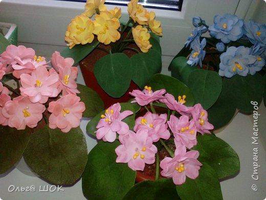 Всем привет! Спишу в предпраздничные дни показать  вам свои цветочки, которые я приготовила для подарков своим подругам и родным. И конечно же поздравить всех девочек,женщин с праздником Весны.Любви! 8 Марта! фото 3