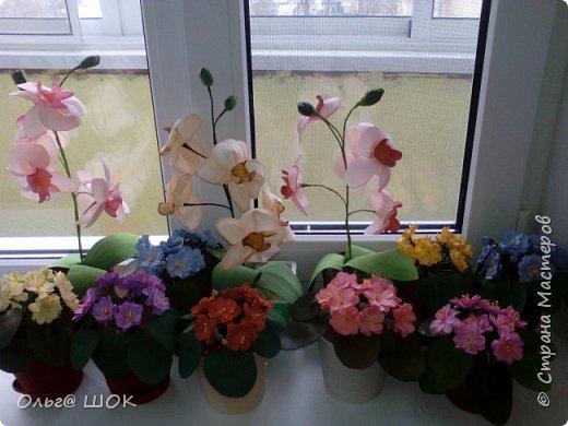 Всем привет! Спишу в предпраздничные дни показать  вам свои цветочки, которые я приготовила для подарков своим подругам и родным. И конечно же поздравить всех девочек,женщин с праздником Весны.Любви! 8 Марта! фото 1