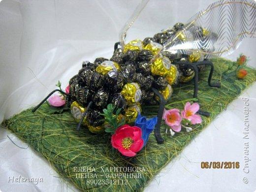 Пчела гигантская ))))) Подарок дедушке - пчеловоду. фото 3