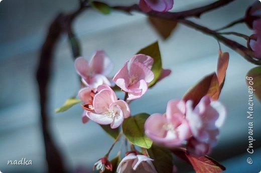 Всем добрый день! Я сегодня с весенними цветами :) Подснежники из китайского зефирного и иранского фоамирана. Тонировка мягкая масляная пастель Mungyo Gallery  фото 9