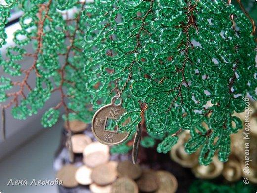Добрый вечер мастера и мастерицы этой большой страны. Наконец - то додела денежное дерево. Первый раз делала на заказ. Результатом довольна))) фото 12