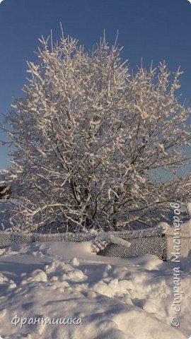 Чудесный зимний день. Морозная погода. На небе голубом сияет солнца круг. Под снегом сладко спит притихшая природа, И снежным серебром покрыто всё вокруг.  На улице бывать мне нравится в морозы; Прекрасных, светлых грёз душа моя полна, Когда стоят в снегу застывшие берёзы И снежная блестит повсюду белизна.  От солнечных лучей пушистый снег искрится, Белеет ярко гладь заснеженных полей; В такие дни в лесу приятно находиться, Увидеть невзначай там стайку снегирей...  Как огоньки, у них краснеют ярко грудки - Поэтому они видны издалека; А в полынье речной гурьбой толпятся утки И ждут, когда от льда очистится река.  Чудесный зимний день. Морозная погода, Под башмаками снег от холода скрипит; С младенчества влюблён я в это время года, Когда в холодной мгле природа сладко спит. (М. Крюков)  фото 4