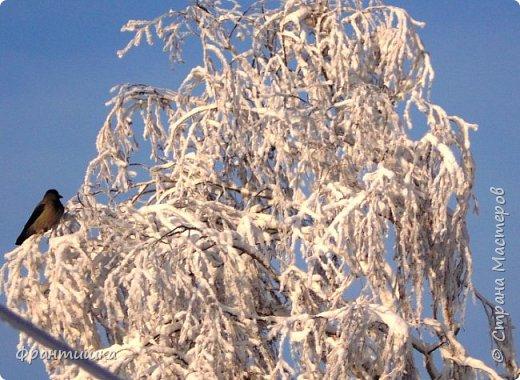 Чудесный зимний день. Морозная погода. На небе голубом сияет солнца круг. Под снегом сладко спит притихшая природа, И снежным серебром покрыто всё вокруг.  На улице бывать мне нравится в морозы; Прекрасных, светлых грёз душа моя полна, Когда стоят в снегу застывшие берёзы И снежная блестит повсюду белизна.  От солнечных лучей пушистый снег искрится, Белеет ярко гладь заснеженных полей; В такие дни в лесу приятно находиться, Увидеть невзначай там стайку снегирей...  Как огоньки, у них краснеют ярко грудки - Поэтому они видны издалека; А в полынье речной гурьбой толпятся утки И ждут, когда от льда очистится река.  Чудесный зимний день. Морозная погода, Под башмаками снег от холода скрипит; С младенчества влюблён я в это время года, Когда в холодной мгле природа сладко спит. (М. Крюков)  фото 5