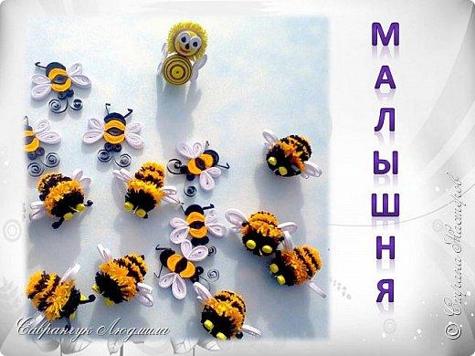Всем привет хочу познакомить вас, со своими маленькими пчелками.  фото 3