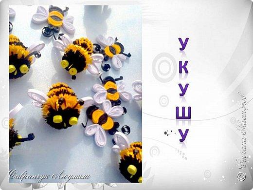 Всем привет хочу познакомить вас, со своими маленькими пчелками.  фото 4