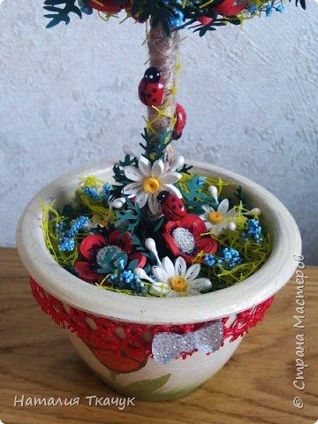 Здравствуйте, дорогие друзья, жители замечательной страны Мастеров!!!! Милые женщины, девушки, девочки!!!!!! От всего сердца хочу поздравить вас с этим прекрасным праздником весны, красоты и любви - с 8-м Марта!!!  Пусть ваша душа до краев наполнится светом, теплом и радостью от искренних пожеланий, нежных цветов, приятных подарков!!! Женщина - это самое прекрасное, что есть в этом мире, поэтому продолжайте и дальше делать его лучшим, принося добро и любовь в этот мир. Побольше улыбайтесь, ведь тем самым вы поднимаете настроение всем вокруг. Будьте всегда счастливыми, довольными, успешными, а главное - любимыми.  К этому чудесному празднику подготовила вот такие подарки!!! Решила сделать топиарии, чтобы они несли счастье и радость в дом!!! Писать много не буду.  Приятного просмотра!!!   фото 12