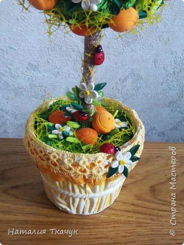 Здравствуйте, дорогие друзья, жители замечательной страны Мастеров!!!! Милые женщины, девушки, девочки!!!!!! От всего сердца хочу поздравить вас с этим прекрасным праздником весны, красоты и любви - с 8-м Марта!!!  Пусть ваша душа до краев наполнится светом, теплом и радостью от искренних пожеланий, нежных цветов, приятных подарков!!! Женщина - это самое прекрасное, что есть в этом мире, поэтому продолжайте и дальше делать его лучшим, принося добро и любовь в этот мир. Побольше улыбайтесь, ведь тем самым вы поднимаете настроение всем вокруг. Будьте всегда счастливыми, довольными, успешными, а главное - любимыми.  К этому чудесному празднику подготовила вот такие подарки!!! Решила сделать топиарии, чтобы они несли счастье и радость в дом!!! Писать много не буду.  Приятного просмотра!!!   фото 16