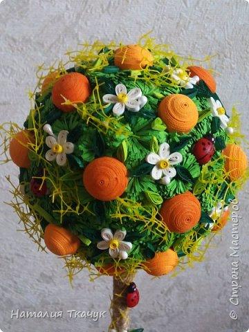 Здравствуйте, дорогие друзья, жители замечательной страны Мастеров!!!! Милые женщины, девушки, девочки!!!!!! От всего сердца хочу поздравить вас с этим прекрасным праздником весны, красоты и любви - с 8-м Марта!!!  Пусть ваша душа до краев наполнится светом, теплом и радостью от искренних пожеланий, нежных цветов, приятных подарков!!! Женщина - это самое прекрасное, что есть в этом мире, поэтому продолжайте и дальше делать его лучшим, принося добро и любовь в этот мир. Побольше улыбайтесь, ведь тем самым вы поднимаете настроение всем вокруг. Будьте всегда счастливыми, довольными, успешными, а главное - любимыми.  К этому чудесному празднику подготовила вот такие подарки!!! Решила сделать топиарии, чтобы они несли счастье и радость в дом!!! Писать много не буду.  Приятного просмотра!!!   фото 14