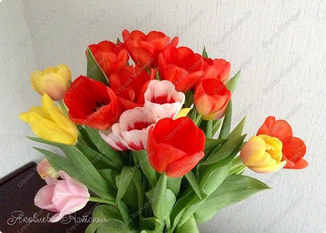 От всей души поздравляю всех женщин с весенним праздником 8 Марта!  Чтобы поздравить мам с этим прекрасным днём, мы со второклассниками нарисовали букеты тюльпанов по МК Ольги, но немного по-другому. Спасибо ей огромное за отличную идею! http://stranamasterov.ru/node/890841 Желаю приятного просмотра! фото 11
